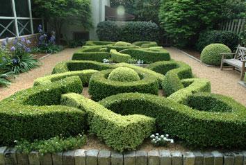 Alex Smith Garden Design Ltd Services